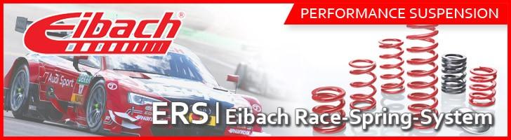 Eibach-Race-Spring-System【ERS 直巻S/P】