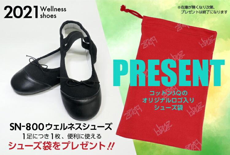 SN-800 ウェルネスシューズ シューズ袋プレゼント