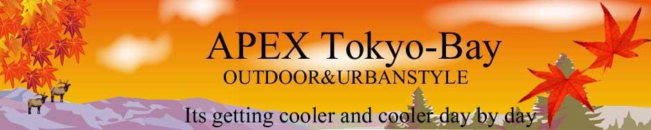 APEX TOKYO-BAY