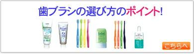 歯ブラシの選び方