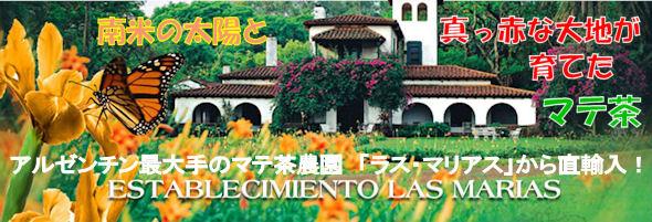 アルゼンチン最大手マテ茶農園ラスマリアス