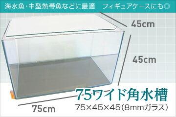 75ワイド角水槽 75×45×45(8mmガラス)