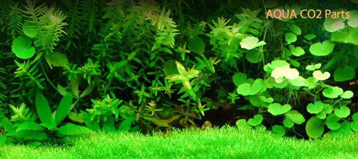 水草育成CO2用品CO2分岐パーツ_top