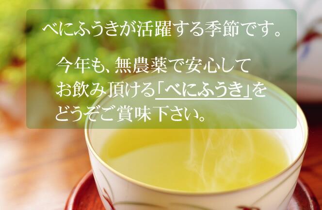 べにふうき、べにふうきセット、べにふうき 緑茶、べにふうき 煎茶、べにふうき緑茶、べにふうき煎茶、無農薬べにふうき、国産べにふうき