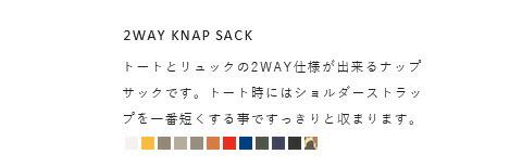 "STANDARD SUPPLY(スタンダードサプライ)<br>2wayナップサック""SIMPLICITY"""