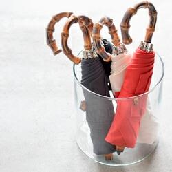 Bon Bon Store(ボンボンストア) ミラトーレ折りたたみ雨傘 bon-17017aw