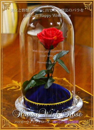 Happy Wish Rose ハッピーウィッシュローズ 枯れない魔法の薔薇