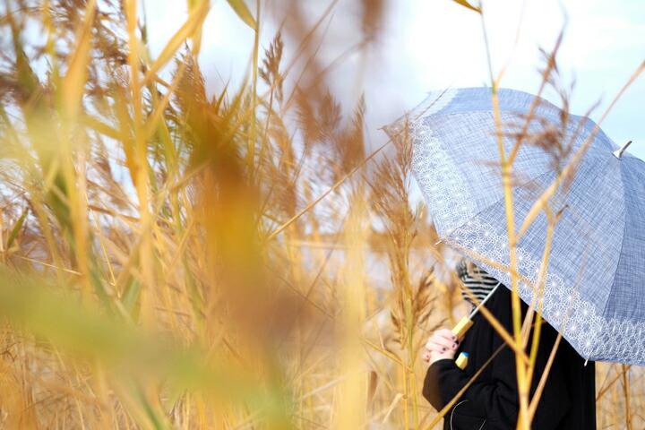 北欧デザイン korko コルコ 晴雨兼用刺繍折傘