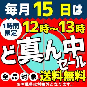 毎月15日の正午から1時間限定【全品送料無料】セール!!(当店の都合により開催しない場合もございます)