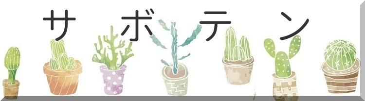■サボテン