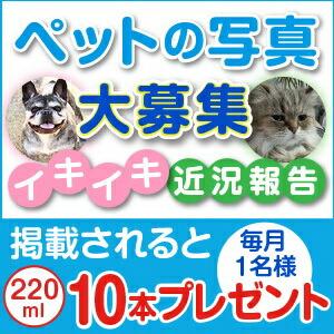 ペットの水素水アルケー イキイキ近況報告