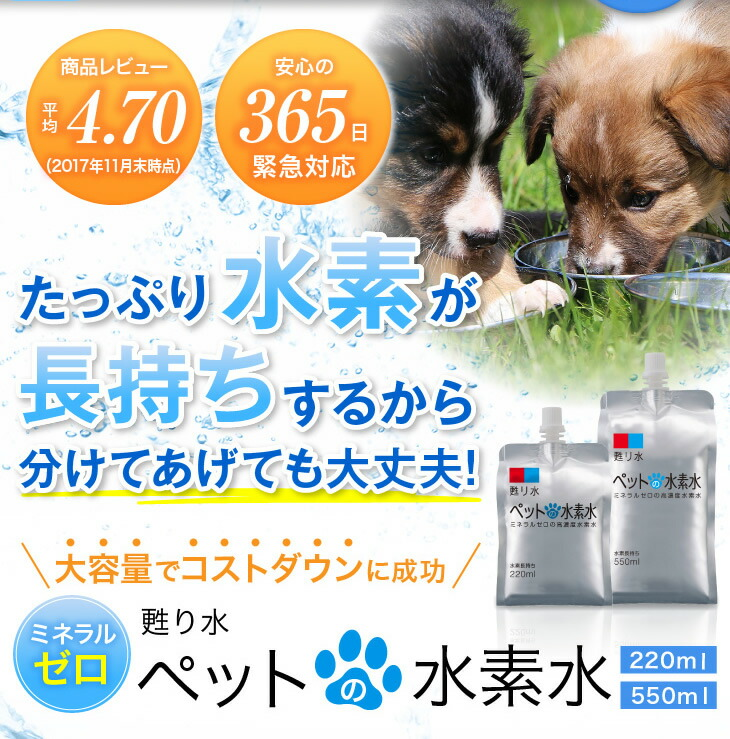 腎臓病,犬,猫,水分補給,高濃度水素水