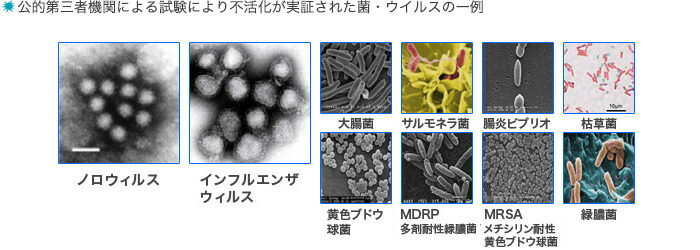 対象となる菌・ウイルス