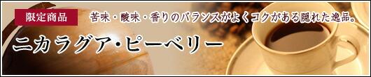 【限定価格】(今月のドリップ)「ニカラグア・ピーベリー」【8/3 11:00〜8/24 0:00まで!】