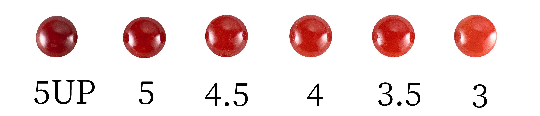 血赤珊瑚のカラーグレード表