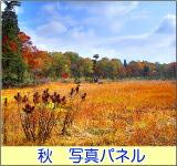 秋の風景 写真パネル
