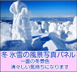 氷雪の風景 写真パネル