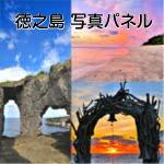 徳之島パネル