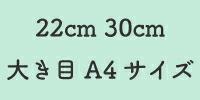 22cm30cm
