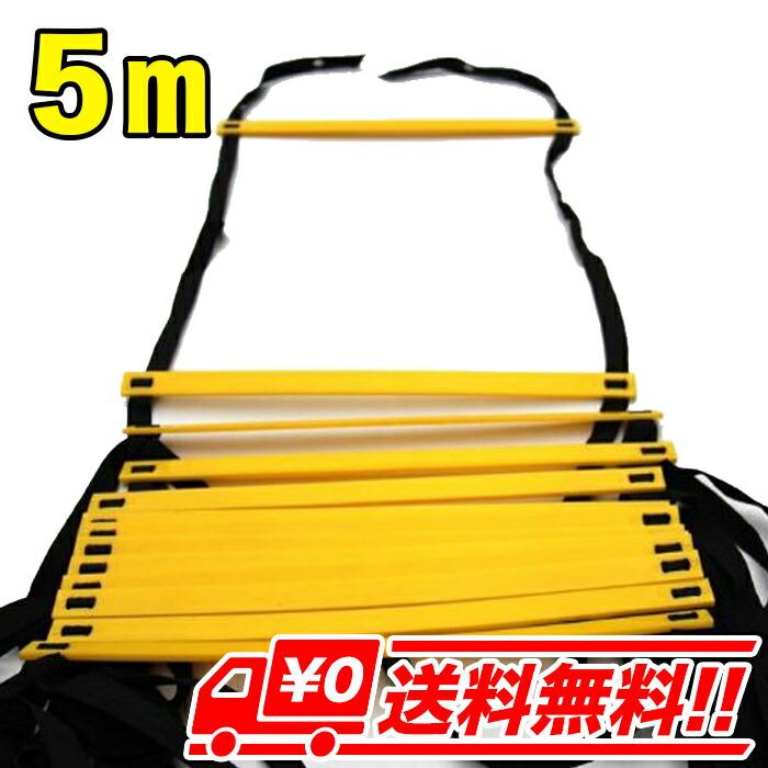 【5m・イエロー】トレーニングラダー