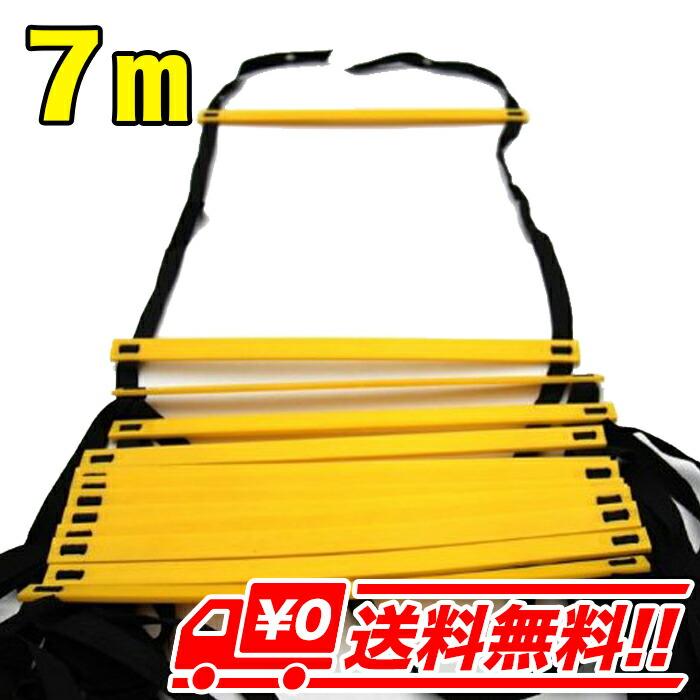 【7m・イエロー】トレーニングラダー