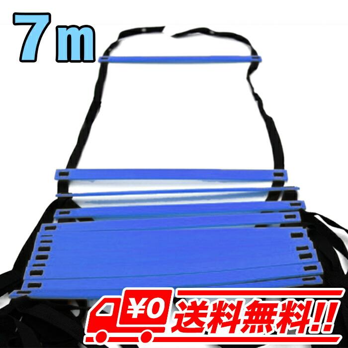 【7m・ブルー】トレーニングラダー