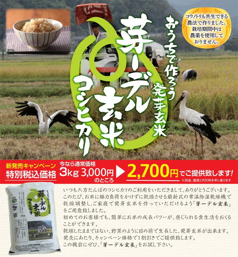 おうちで作ろう発芽玄米
