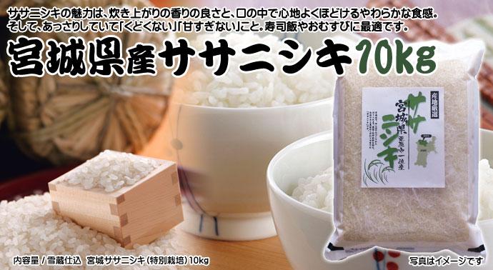 宮城県産ササニシキ10kg