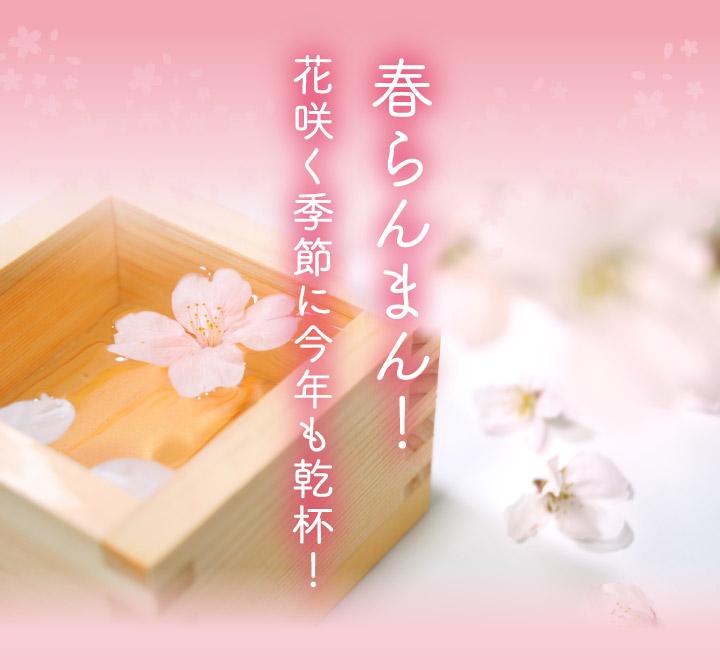 春の特別版 福袋 日本酒6本セット