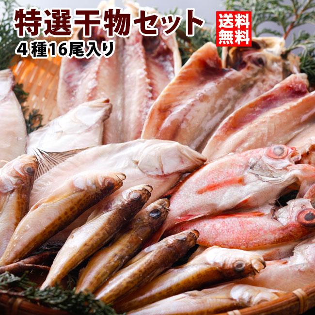 日本海の特選干物セット