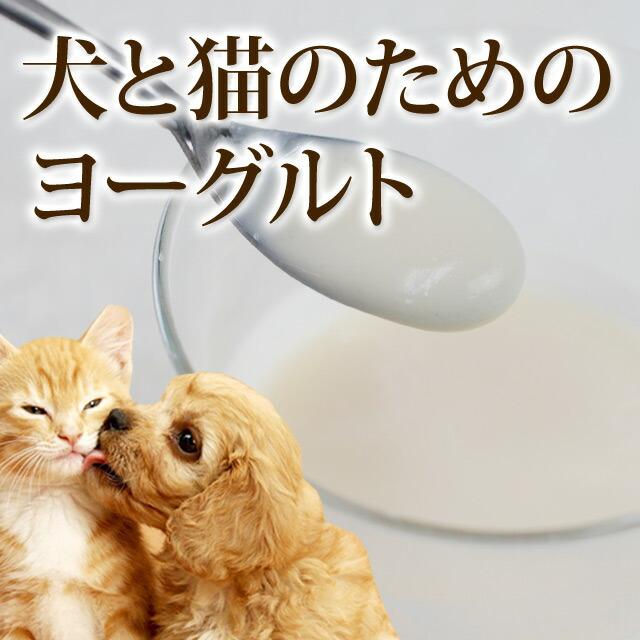 犬と猫のためのヨーグルト