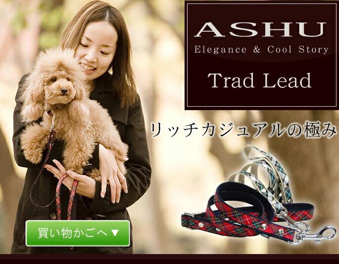 ASHU Elegance & Cool Story Trad Lead リッチカジュアルの極み