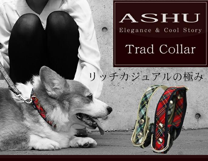ASHU Elegance & Cool Story Trad Collar リッチカジュアルの極み