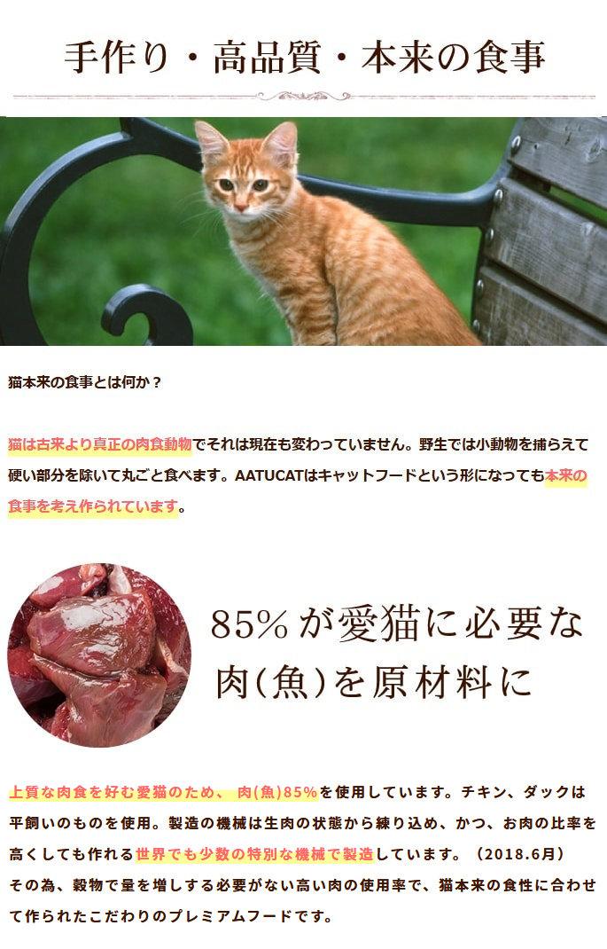 猫本来の食事とは何か?