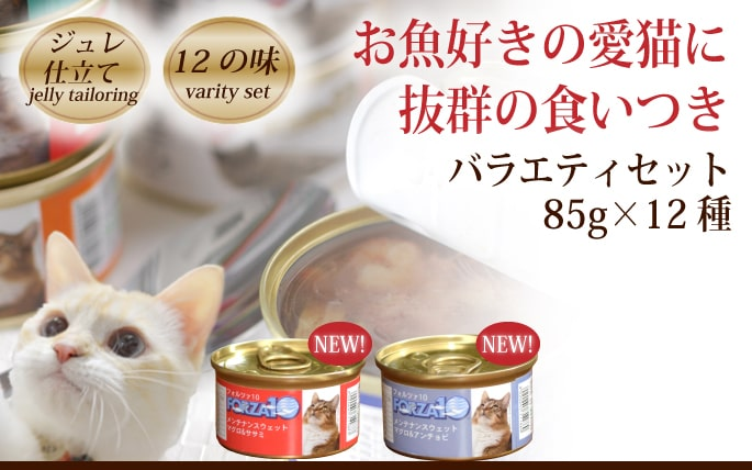 FORZA10 メンテナンス缶