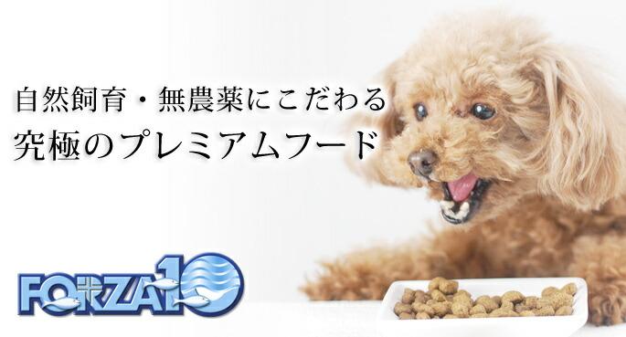 犬用 FORZA10療法食 自然飼育 無農薬