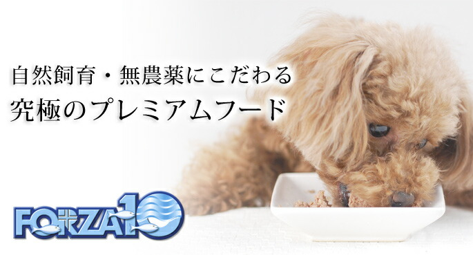 FORZA10療法食