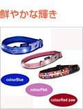 犬用光る首輪/ファッショナブル イルミネーションカラー