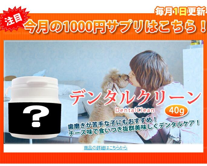 1000円サプリ デンタルクリーン