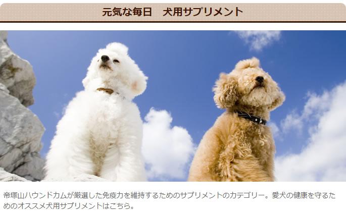 元気な毎日 犬用サプリメント