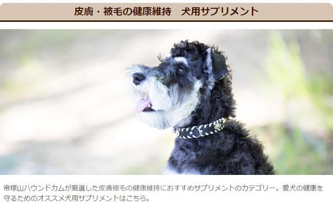 皮膚・被毛の健康維持 犬用サプリメント