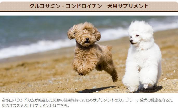 グルコサミン・コンドロイチン 犬用サプリメント