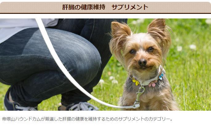 肝臓の健康 犬用サプリメント