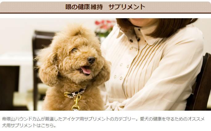 眼の健康 犬用サプリメント