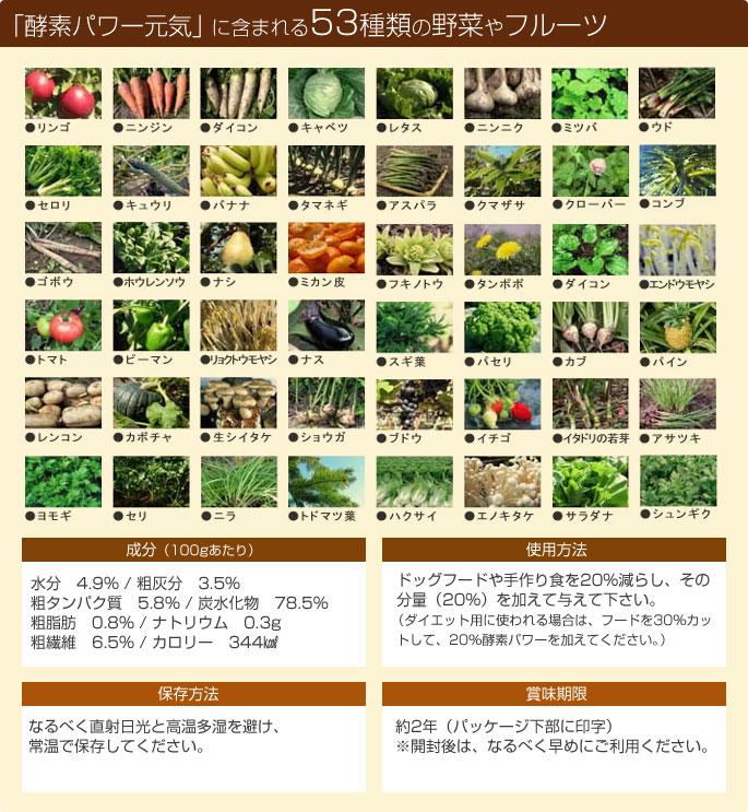 酵素パワー元気 53種類の野菜とフルーツ