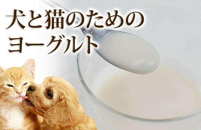 犬と猫のためのヨーグルト 腸まで届く乳酸菌