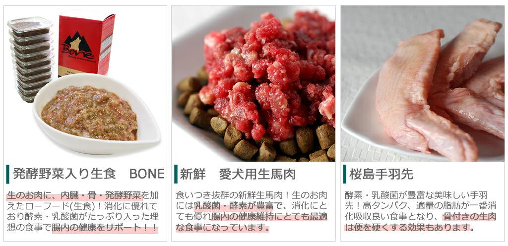 乳酸菌を含む食事で腸内環境向上