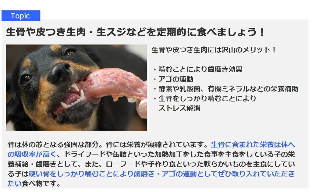 生骨や皮つき生肉・生スジなどを定期的に食べましょう!