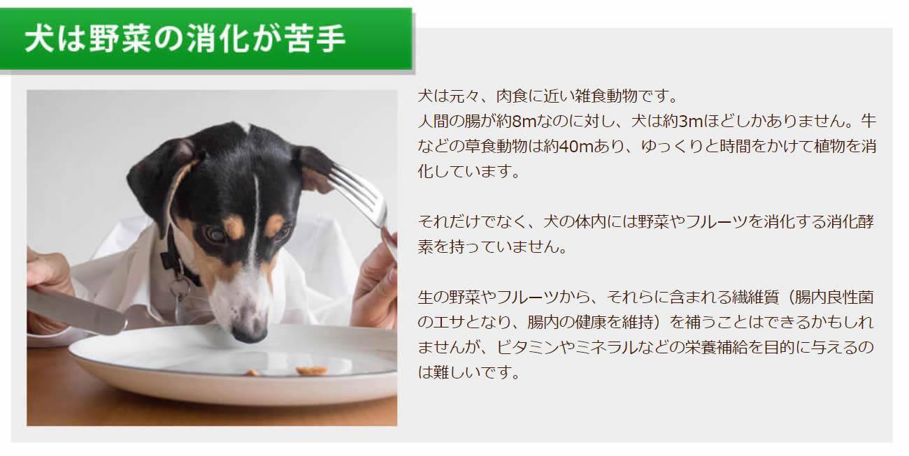 犬は野菜の消化が苦手