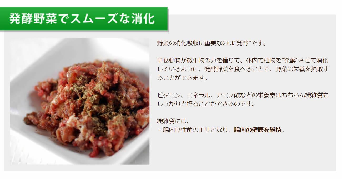 発酵野菜でスムーズな消化